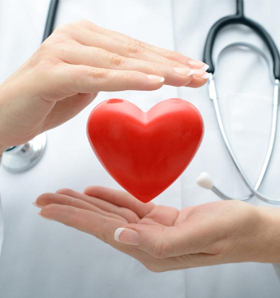 Здоровое сердце - путевка с лечением от 10 суток